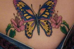 цветная тату бабочка