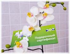 Косметология Эра в Воронеже